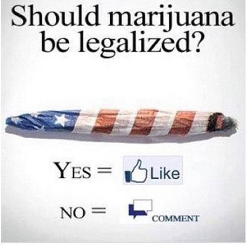 marijuana should be legal essay Free essay on essay on whether or not marijuana should be legalized available totally free at echeatcom, the largest free essay community.