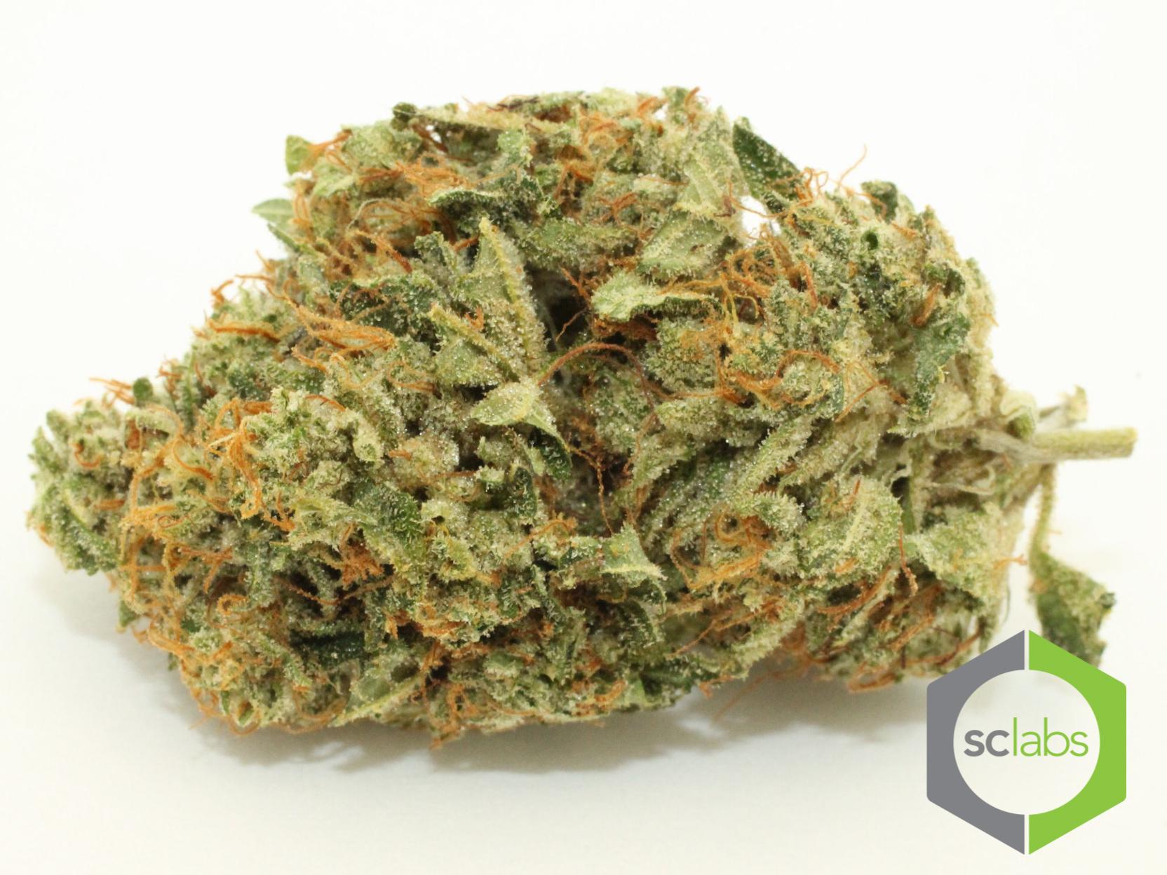 skywalker-weed