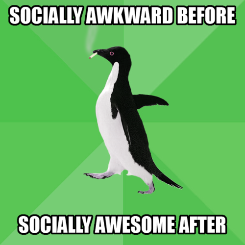 socially awesome awkward penguin MEMES
