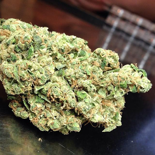 sour-diesel-cannabis