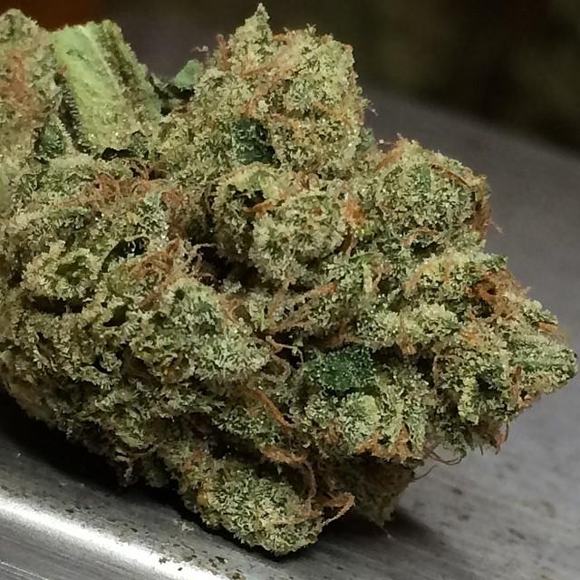 sour-og-weed