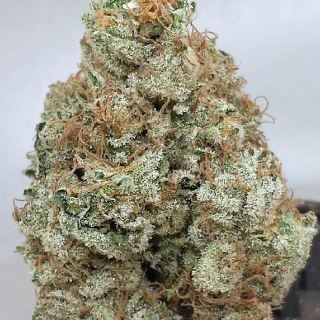 space-creep-weed