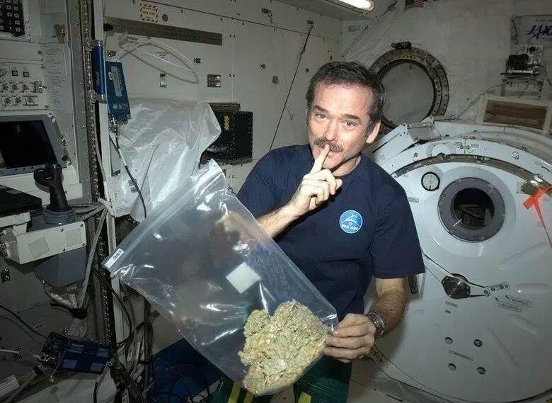 space-weed-fun