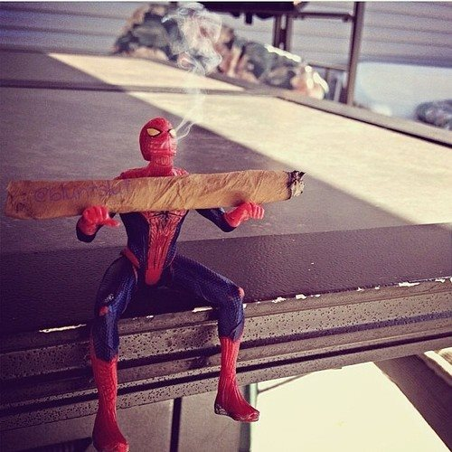 spidey-loves-maryjane