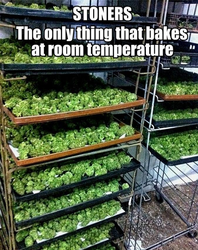 stoners-baking
