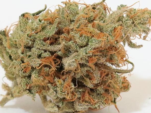 super-silver-haze-weed