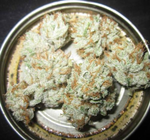super-sour-og-weed