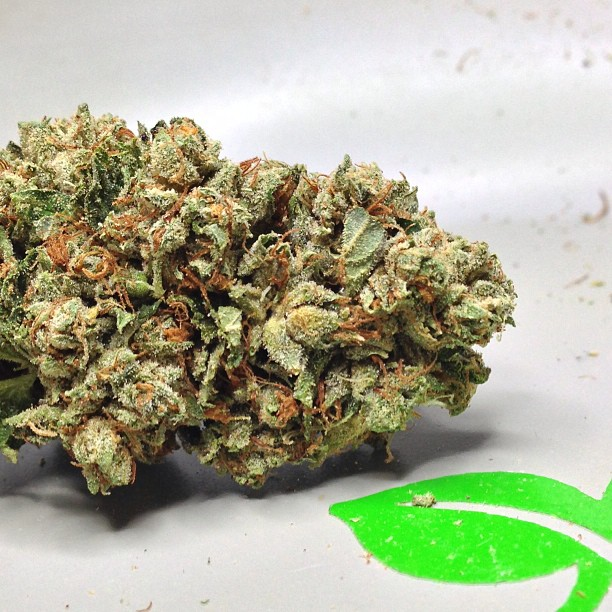 tahoe-og-mmjcannabis