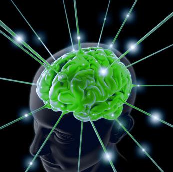 thc-brain-support