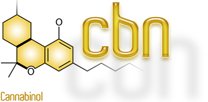 cbn-1