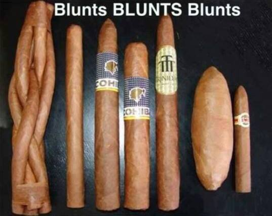 appeal-of-the-wonderful-blunt