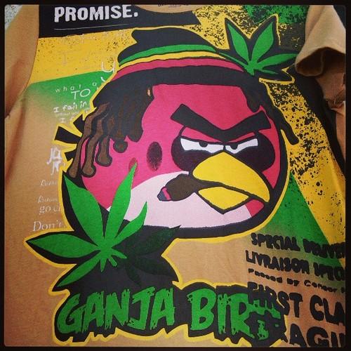 ganja-birds