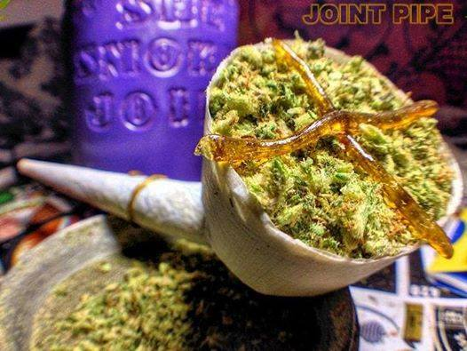 the-joint-pipe