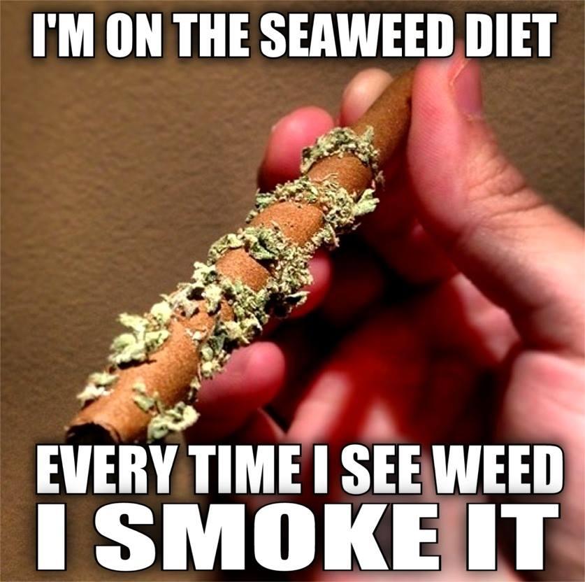 the-see-weed-diet