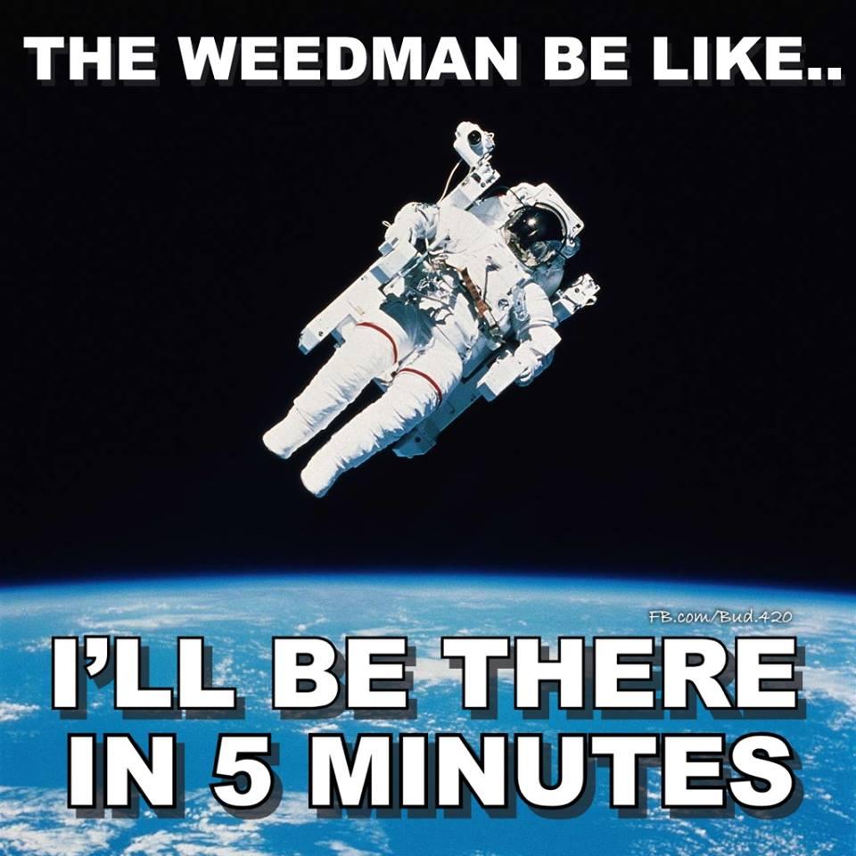 weedman-late