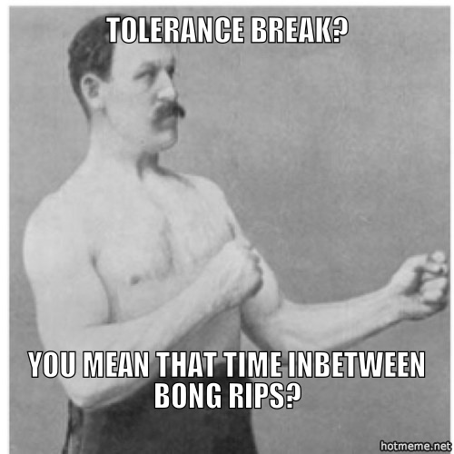 tolerance-break-should-you-take-one