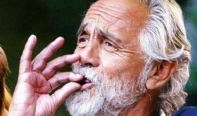 tommy-chong-weed