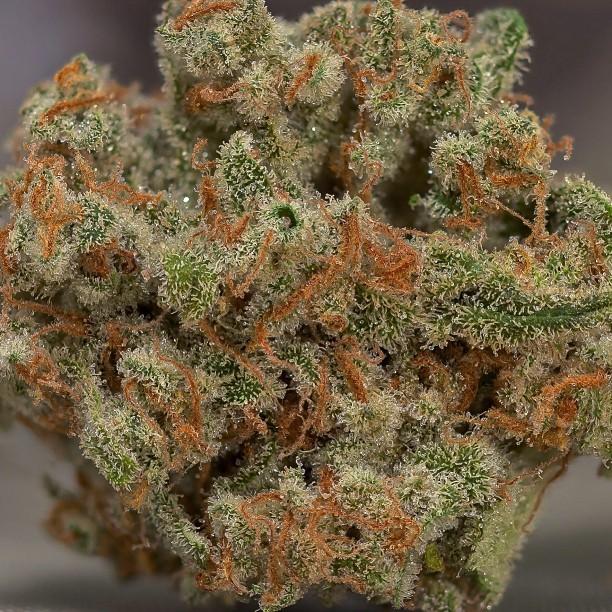 trainwreck-weed