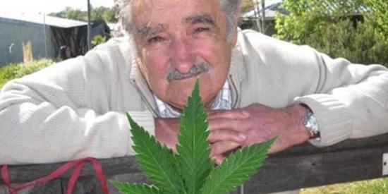 uruguay-and-weed