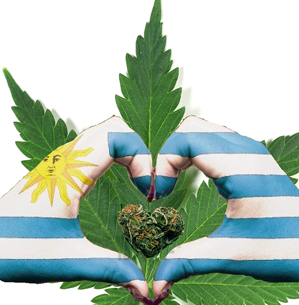 uruguay-selling-non-taxed-weed