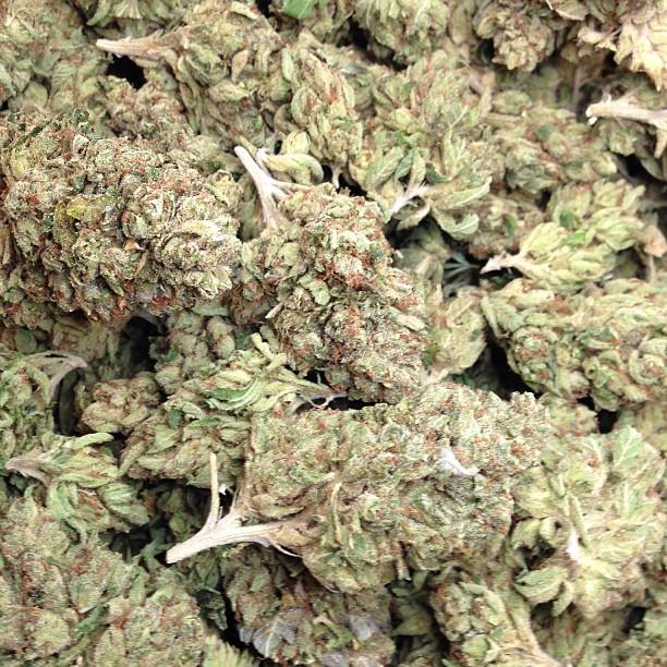 vader-og-cannabis