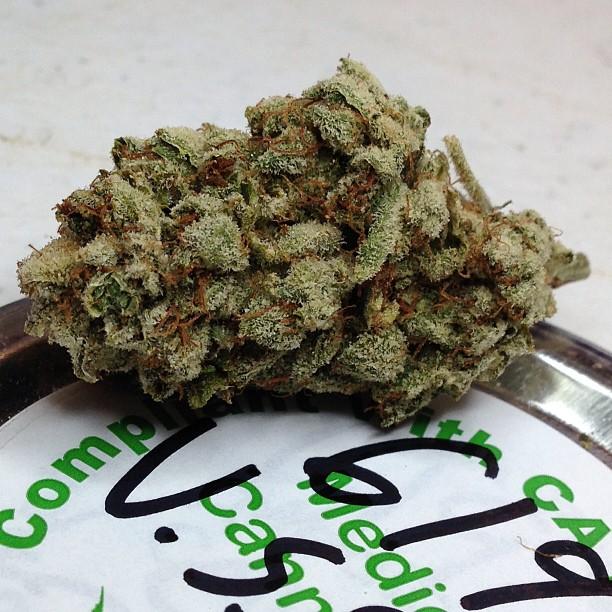 vsog-weed-1