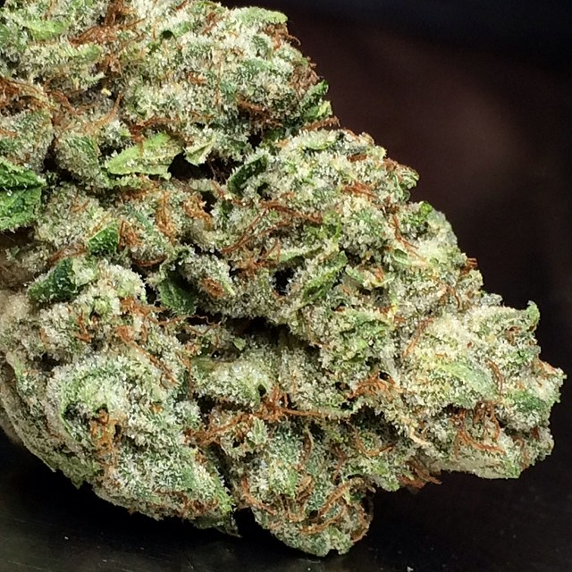 vicious-og-weed