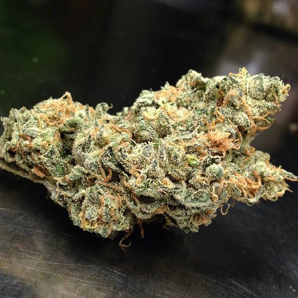 vortex-weed