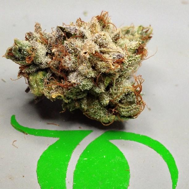 vsog-weed-bud-12