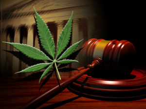 wa-supreme-court-rules-for-mj-use
