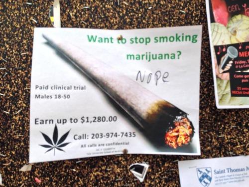 marijuana-fun