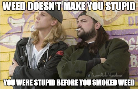 weed-doesnt-make-you-stupid