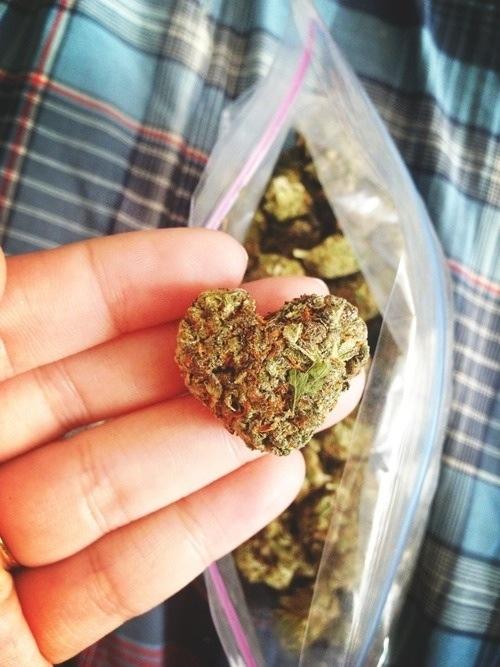 weed-love-fun