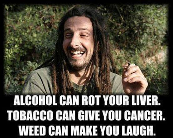 weed-winner