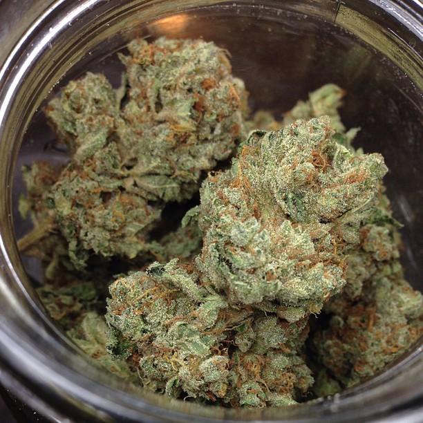 white-fire-og-weed