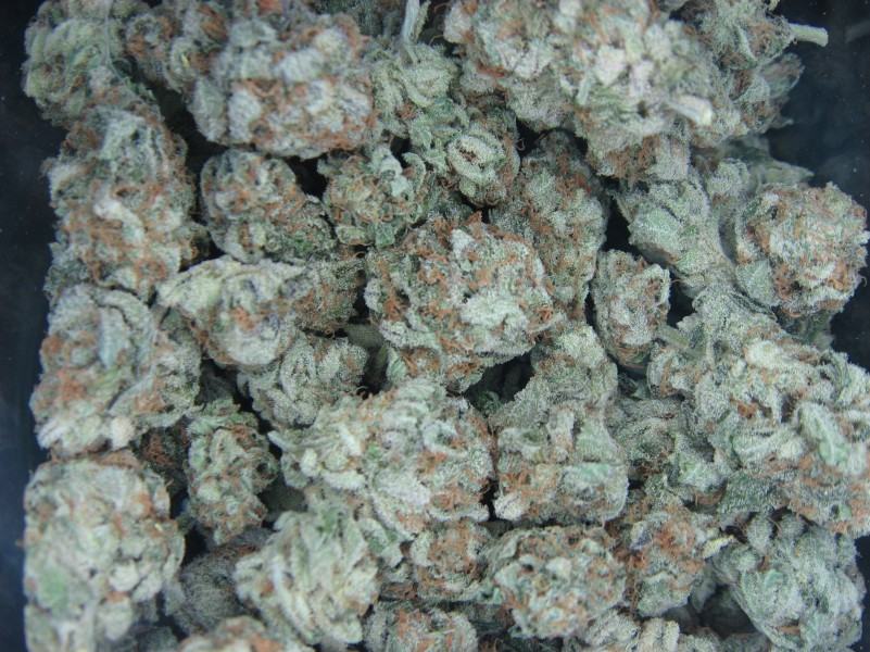white-widow-hybrid-weed