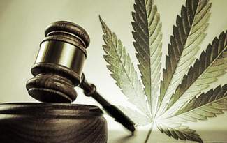 state-mmj-laws-respected-by-feds-or-not