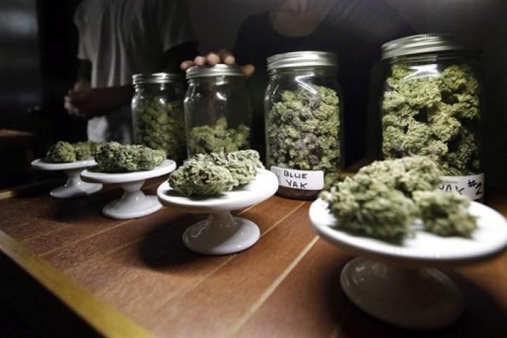 free-canadian-medical-marijuana