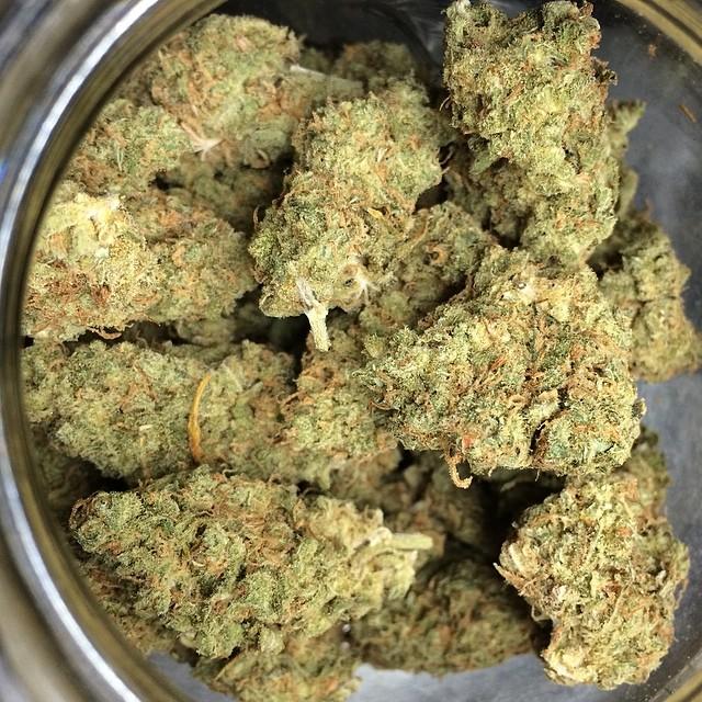 xj-13-weed