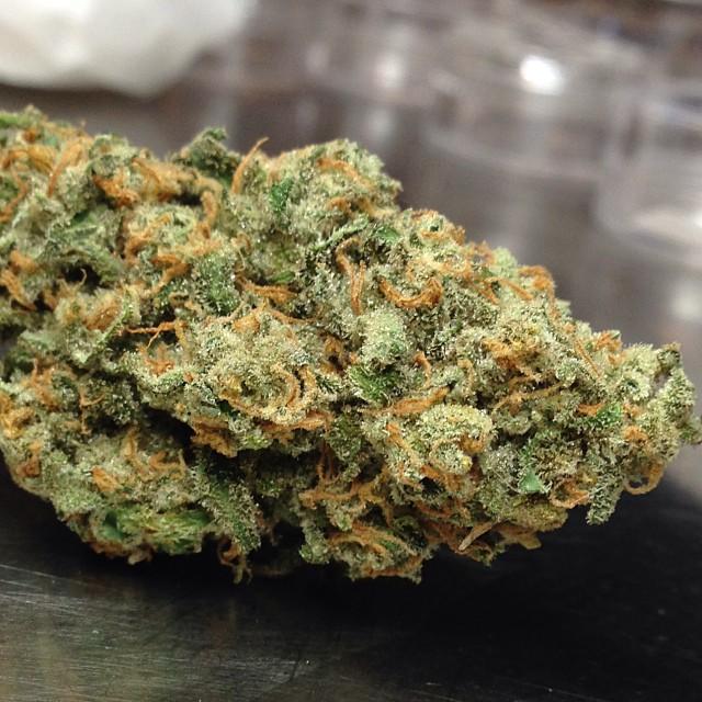 xj13-weed