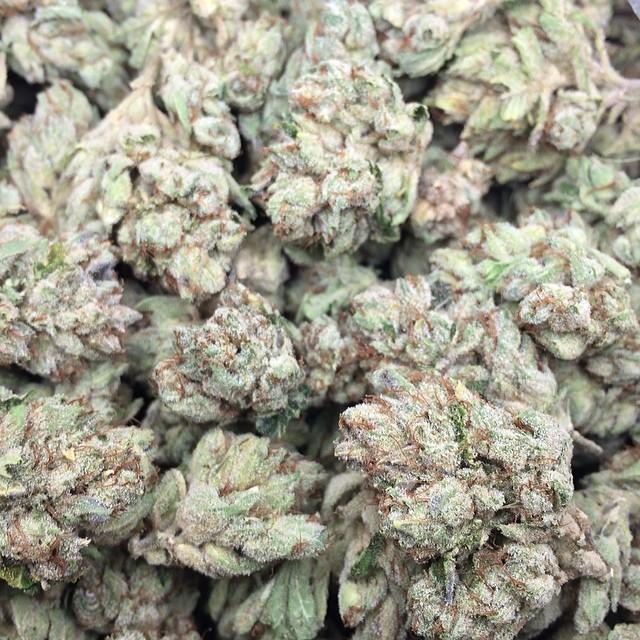 frosty-yoda-og-weed