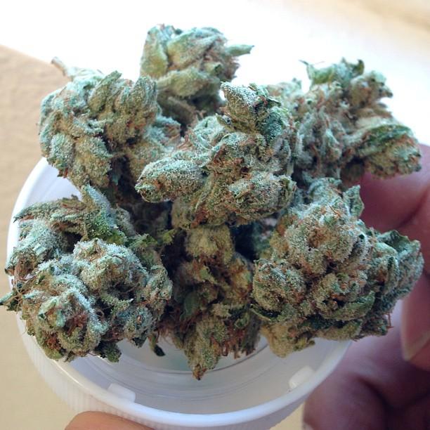 yoda-og-weed